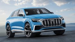 Audi Q8-10-01-2017 (5)